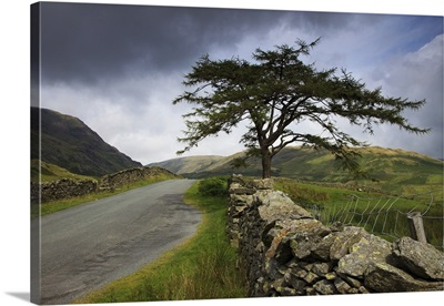 A Stone Fence Running Along A Road; Lake District, Cumbria, England
