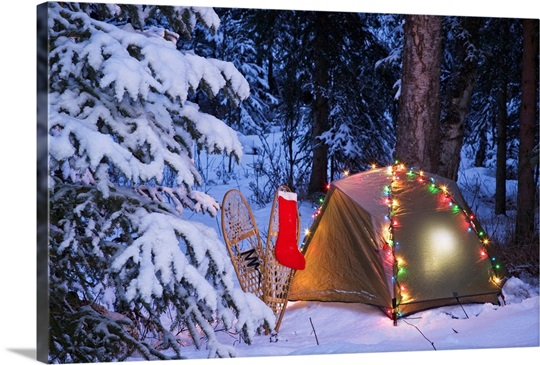 A Tent Set Up In The Woods With Christmas Lights And