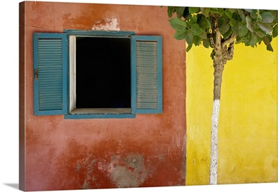 A Tree Outside A Colorful Building And A Window With Blue Shutters; Dakar, Senegal