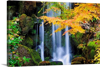 A Waterfall In A Japanese Garden In Autumn, Portland, Oregon