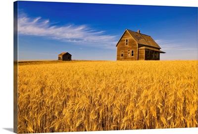 Abandoned Farm House, Saskatchewan, Canada