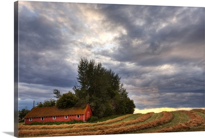 Abandoned Red Barn With Stormy Evening Sky, Central Alberta, Canada