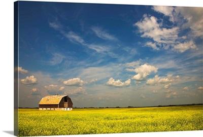Alberta, Canada; An Old Barn In A Field