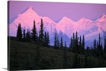 Alpenglow on Mt Brooks and AK Range Denali