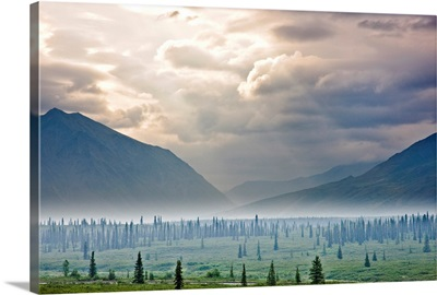 Atmospheric scenic of Broad Pass and boreal forest with smoke from wildfires