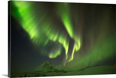Aurora Borealis, or Northern Lights, along the Dempster Highway, Yukon, Canada