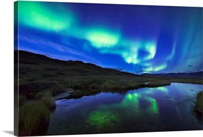 Aurora borealis over a pond in Denali National Park and Preserve, Alaska