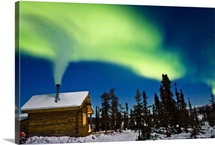 Aurora over cabin in the White Mountain recreation area during Winter in Interior Alaska
