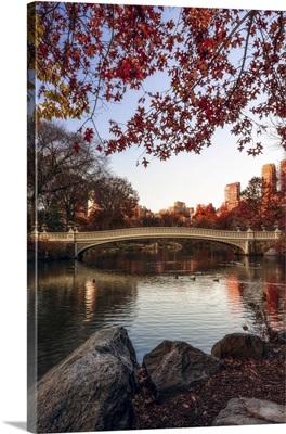 Autumn Colored Foliage Around Bow Bridge, Central Park, New York City, New York