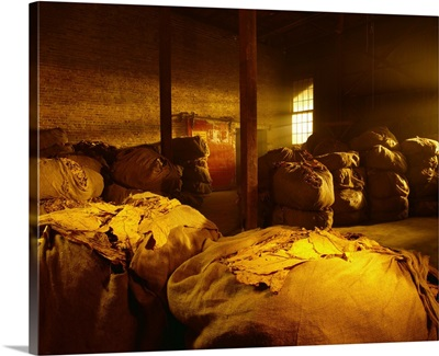 Bales of dried tobacco in a tobacco warehouse