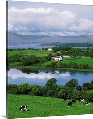 Bantry Bay, Co Cork, Ireland