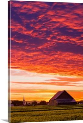 Barley Fields, Barn, Church And Colourful Sky At Dusk, Quebec, Canada
