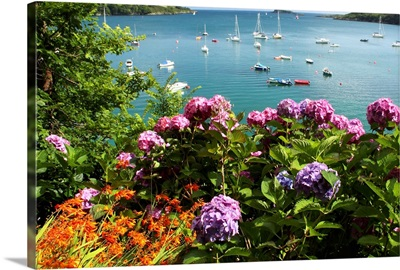 Bay Beside Glandore Village In West Cork In Munster Region; Glandore, Ireland