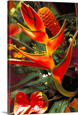 Beautiful Tropical Bouquet Flower Arrangement With Heliconia