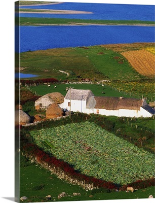 Bloody Foreland, Ireland; Aerial View Of Farm Structures