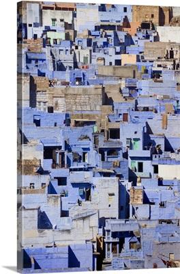 Blue Buildings Of Jodhpur, Aerial View