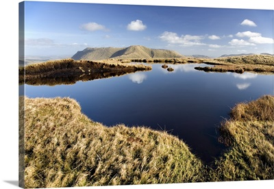 Bog Pool In The Mountains, Connemara, County Galway, Ireland