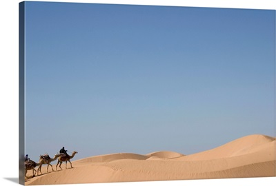 Camel Trek On Sand Dunes, Morocco