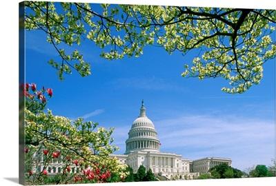 Capitol Building Washington, DC, USA
