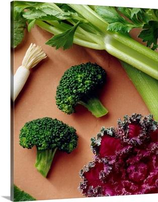 Celery, broccoli florets, green onion, flowering kale and romaine lettuce leaf