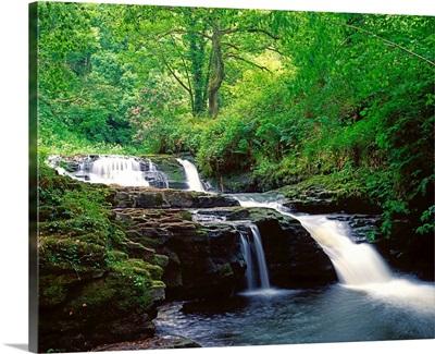 Clare Glens, Co Limerick, Ireland; Irish Landscape