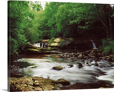 Clare River, Clare Glens, Co Tipperary, Ireland, Water Flowing Through The Woods