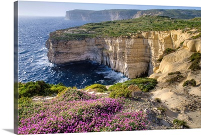 Cliffs Along Ocean With Wildflowers