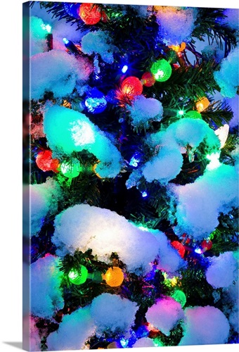 close up of a multi colored christmas tree lit at dusk outside in winter