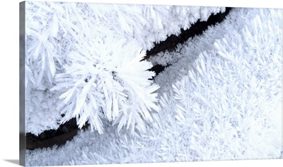 Close up of hoar frost along the North Fork of the Nooksak River