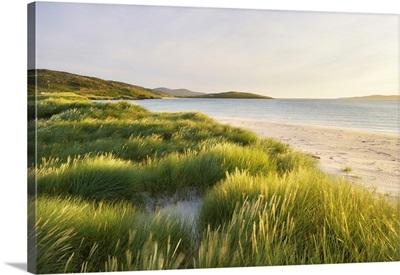 Coastal Scenic, Sound Of Taransay, Isle Of Harris, Outer Hebrides, Scotland