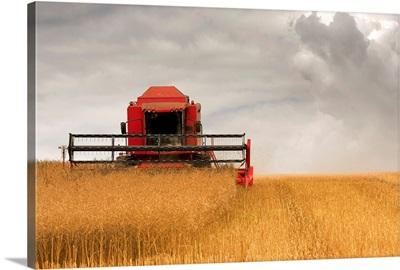 Combine Harvester, North Yorkshire, England