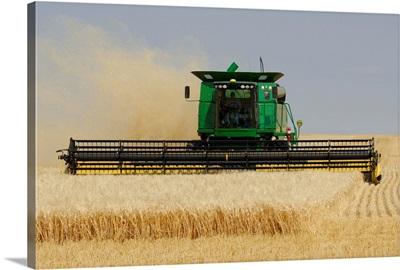 Combine Working A Field On The Prairies, Southern Saskatchewan, Canada
