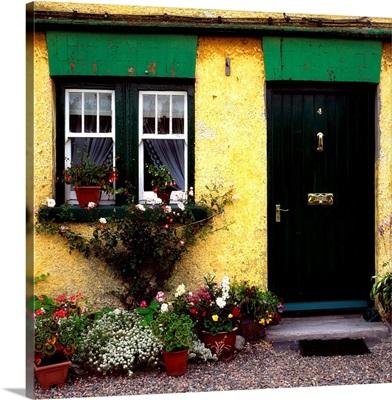 Cottage At Bushmills, Co Antrim, Ireland