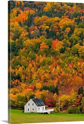 Cottage In Front Of Autumn Colours, Capstick, Nova Scotia, Canada