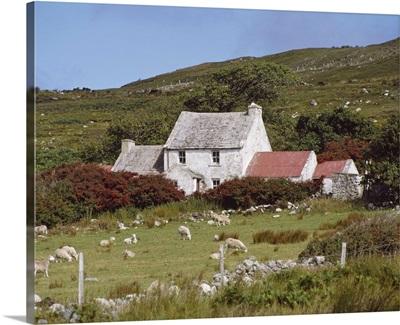 Cottage, Ireland