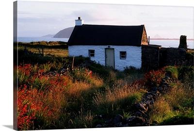 Cottage, Near Dunquin, Dingle Peninsula, Co Kerry, Ireland