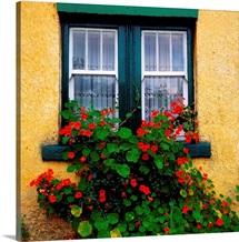 Cottage Window, County Antrim, Ireland