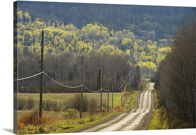 Country Road With Electrical Wires Running Along It, Thunder Bay, Ontario, Canada