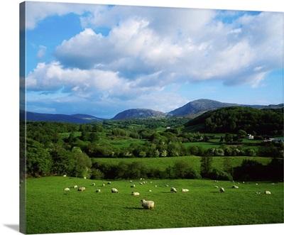 County Kerry, Ireland, Near Kilgarvan