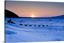 Dallas Seavey drops onto the Yukon River in Interior Alaska during the 2010 Iditarod