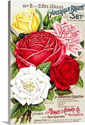 Dingee and Conard Co. rose bulb and seed catalog from 19th century