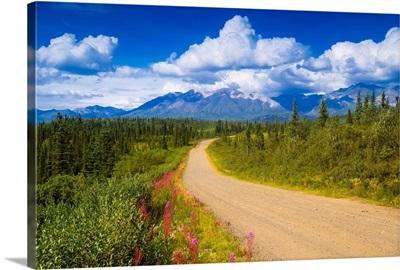 Dirt road crosses through scenic Alaska
