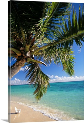 Distant View Of White Beach Chair In Shoreline Waters With Palm Tree