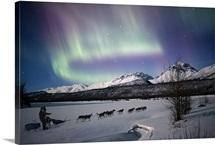 Dog team on the Matanuska River with Northern Lights, Matanuska Susitna, Alaska