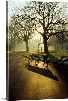 Dublin Parks, St. Stephens Green