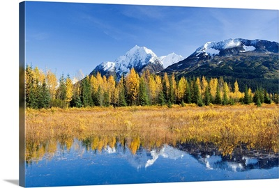 Fall foliage reflecting in a pond while Paradise Peak is capped with snow