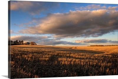 Farm And Stubble In Fall During Harvest, Near Edmonton, Alberta, Canada