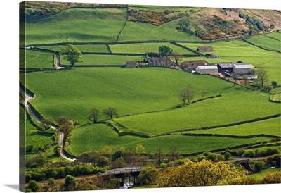 Farmland Of North York Moors National Park, England