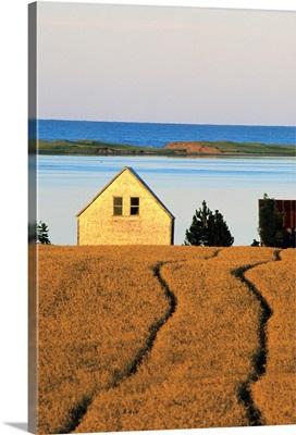 Farmland, Queens County, Prince Edward Island, Canada