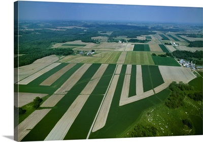 Farmsteads and agricultural fields, some with crops and others freshly planted